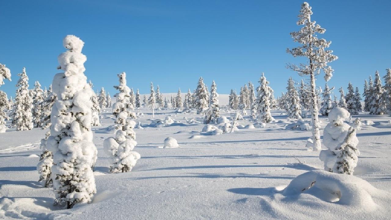 viaggi trekking Finlandia