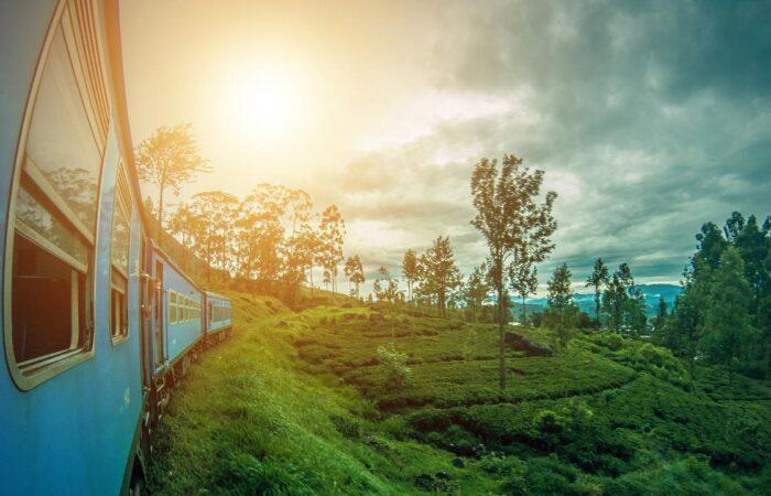 viaggi di gruppo sri lanka