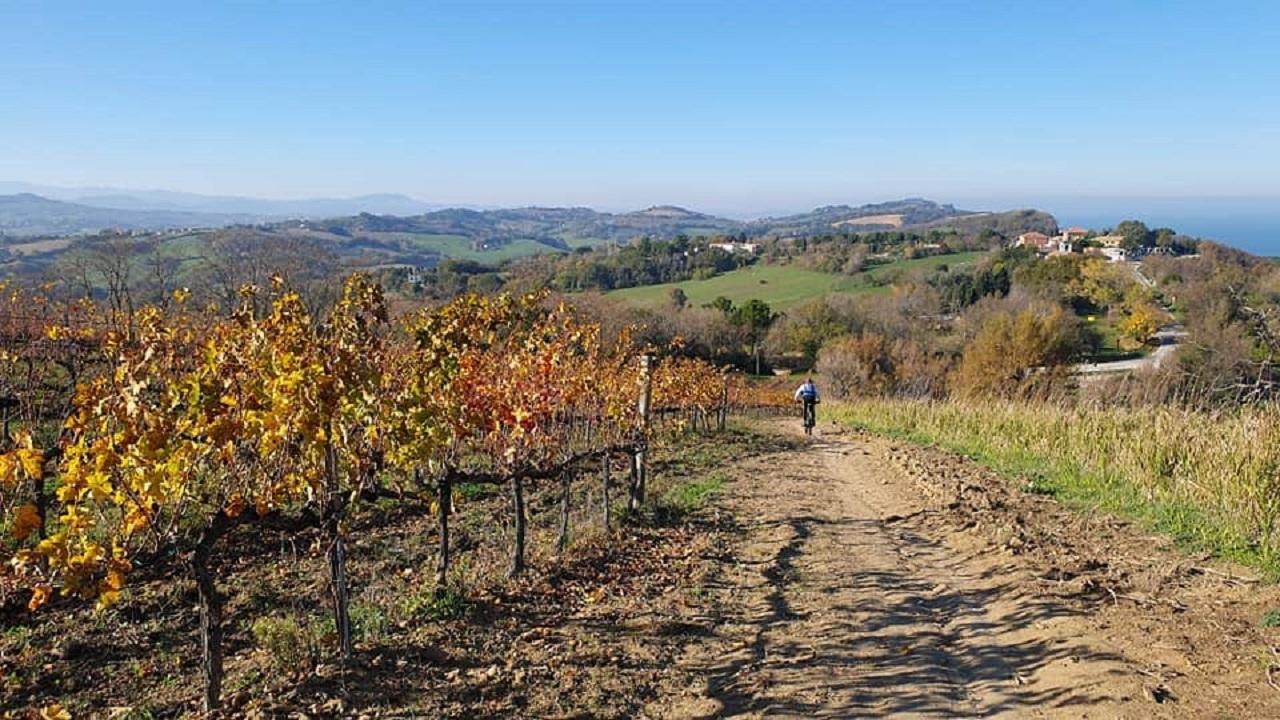 Tour in bici Pesaro - Parco San Bartolo paesaggio