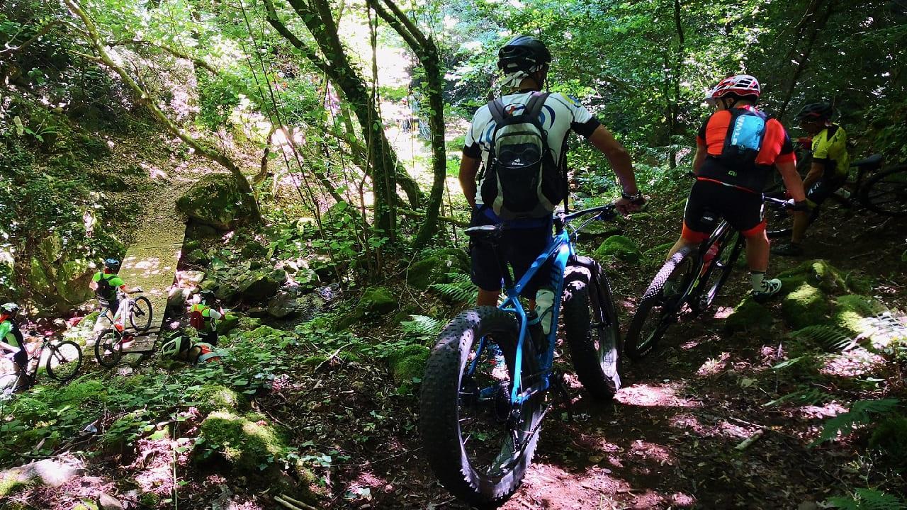tour calabria - escursione in bicicletta nel Parco della Sila nel viaggio organizzato di gruppo in Calabria con accompagnatore tra trekking, bici e mare