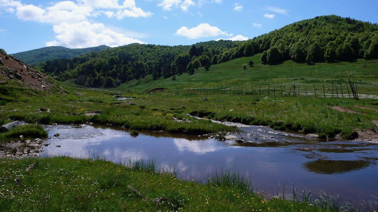 tour calabria - parco della sila paesaggio